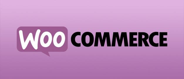 Ιδιαίτερα Μαθήματα Κατασκευής Ιστοσελίδων με το WooCommerce