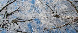 Κριτική Φωτογραφιών #7 – Χειμώνας